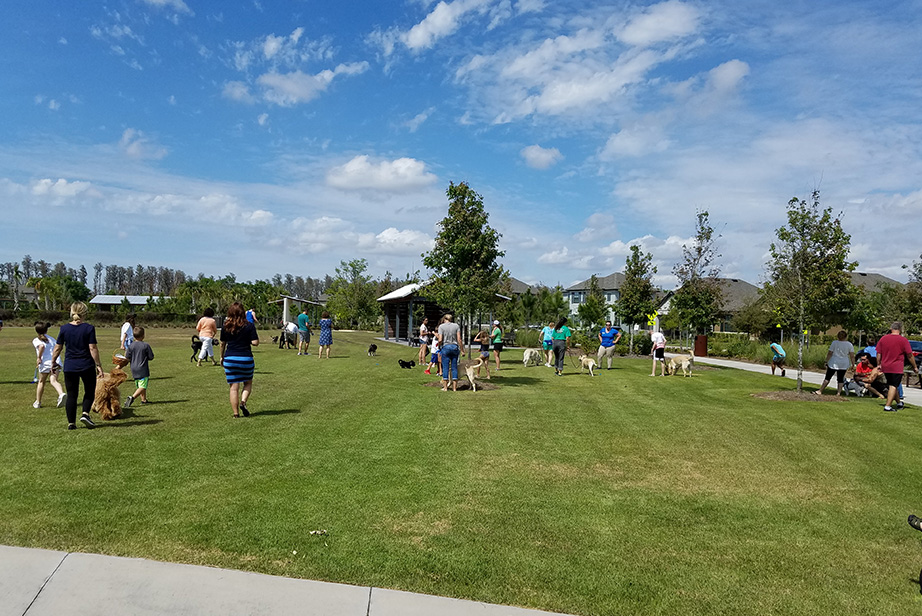 Bark in Park Dog Egg Hunt.jpg